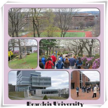 Navigatio on the Road: Brandeis University