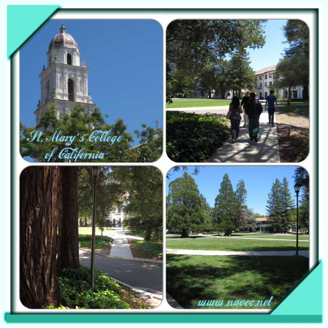 College review: St. Mary's College of California