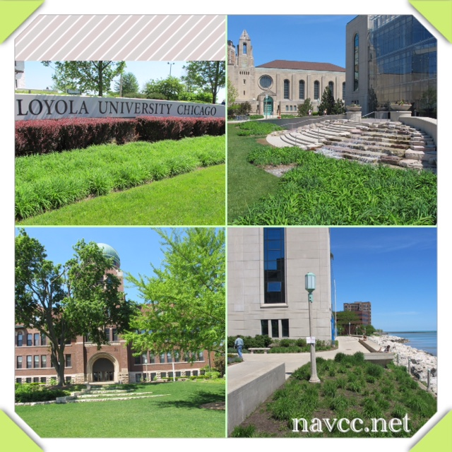 Navigatio on the Road: Loyola Chicago