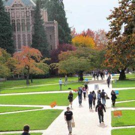 University-of-Washington_1170