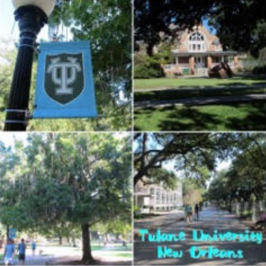 The University Trek – Navigatio College Consulting