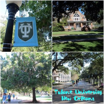 Tulane University Review