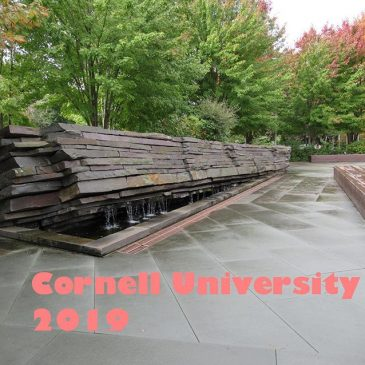Navigatio on the Road: Cornell University